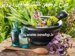 کشت گیاهان دارویی
