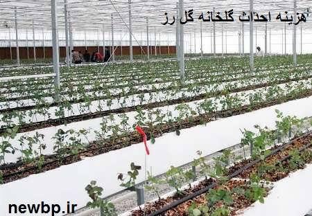 هزینه احداث گلخانه گل رز