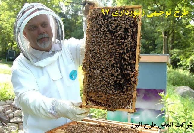 آموزش زنبورداری