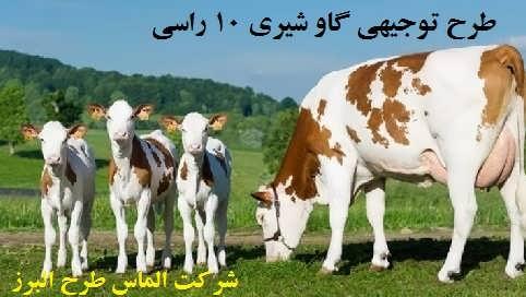 طرح توجیهی گاو شیری 10 راسی سال 97