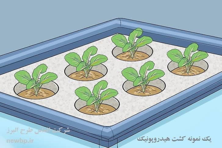 طرح توجیهی کشت گیاهان دارویی