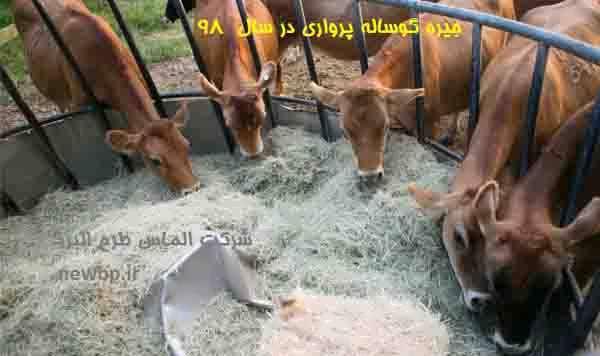 جیره نویسی گوساله پرواری