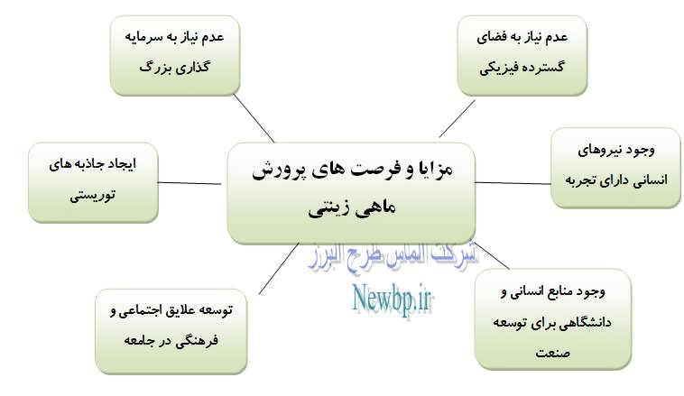 طرح توجیهی پرورش ماهی زینتی pdf