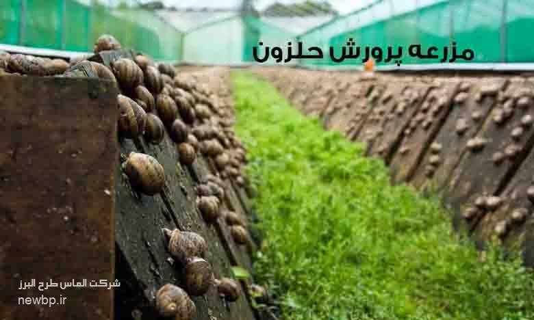 مزرعه پرورش حلزون