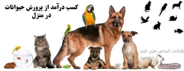 پرورش حیوانات پرسود در منزل