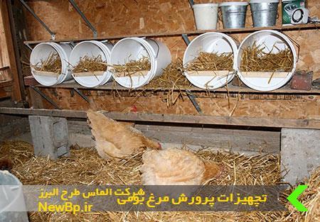 تجهیزات پرورش مرغ بومی