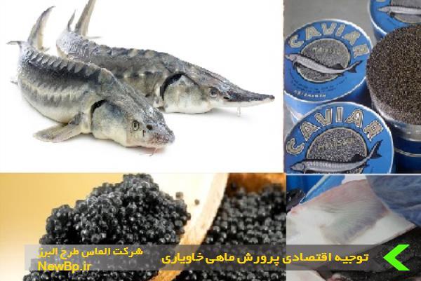 توجیه اقتصادی پرورش ماهی خاویاری