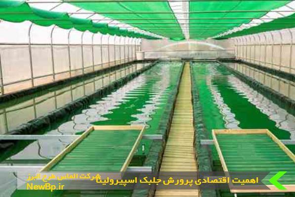 اهمیت اقتصادی پرورش جلبک اسپیرولینا
