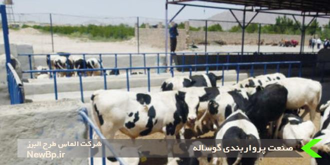 صنعت پرواربندی گوساله