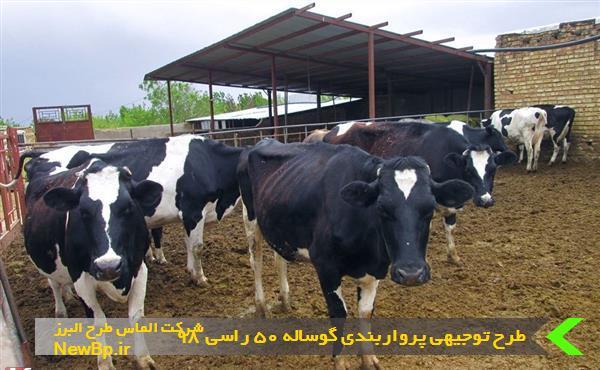 طرح توجیهی پرواربندی گوساله 50 رأسی