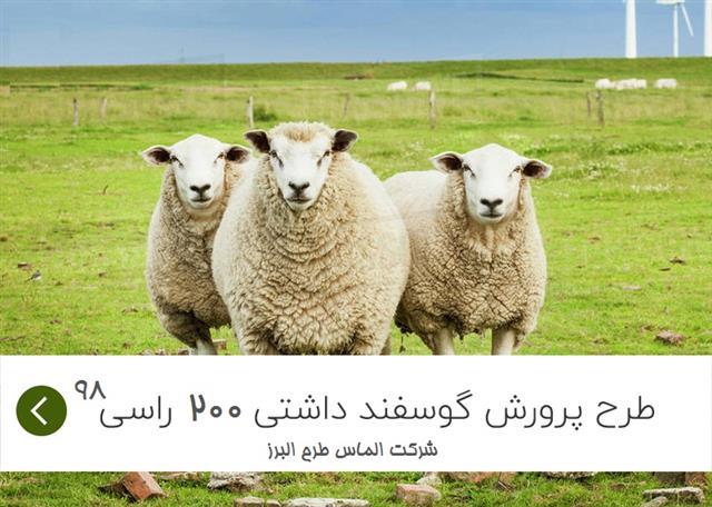 طرح توجیهی پرورش گوسفند داشتی 200 راسی