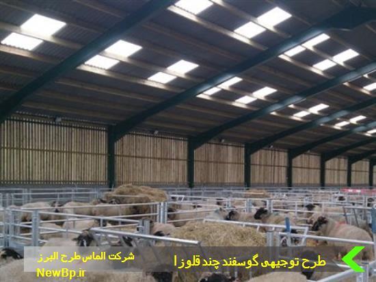 جایگاه گوسفند چندقلوزا