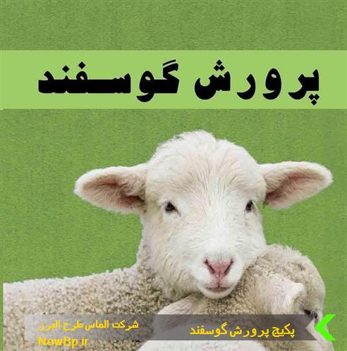 پکیج آموزشی پرورش گوسفند