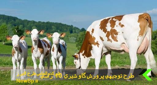 طرح توجيهي پرورش گاو شيري 10 راسي