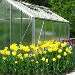 راهنمای احداث گلخانه